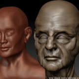 Comparisation of two head sculptures